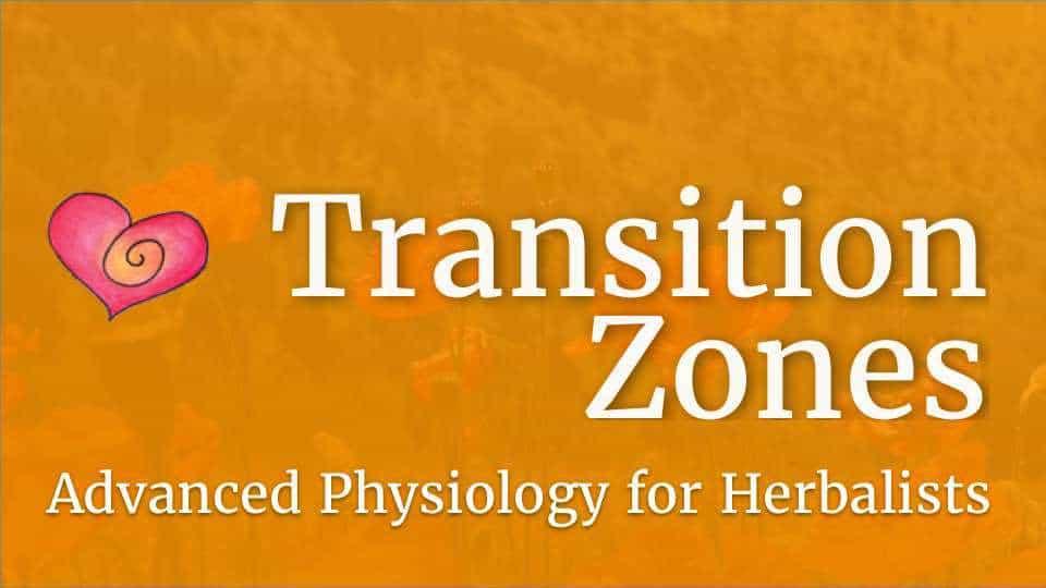 Course-TZ-logo